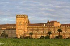 2019 SEPTIEMBRE - Madrigal de las Altas Torres (Ávila)